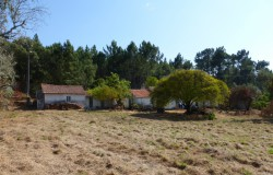 Two bedroom farmhouse in need of modernization work with 1.980 square meters of land for sale near the town of Cernache do Bonjardim