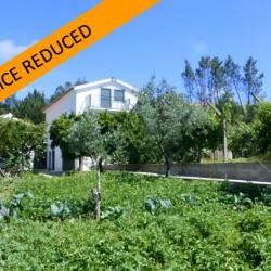 Nicely renovated three bedroom farm house with beautiful plot and large annex located on the outskirts of Cernache do Bonjardim at 6100 Sertã, Portugal for 98000