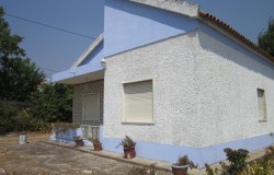 A small farm with various annexes for sale near Tomar, Central Portugal