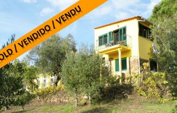 A cute 3 bedroom house with land and only 1 km away from the lake for sale near Tomar, Central Portugal