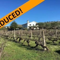 REDUCED TO SELL! // Farm with 4 bed House, stone building (potential stables or guesthouse)1.6ha of flat land, borehole & 2 wells at 3250, Portugal for 145000