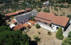 "Large rural retreat, ""Quinta"" with 5 plus bed Houses, annexes and 2ha fenced flat land, well for sale near Alvaiazere"