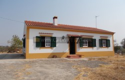 A quaint 1-2 bedroom property with 10000sqm of land totally fenced only 11km away from Tomar