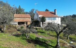 A tired character property in need of some work and an annex for sale near Ferreira do Zêzere