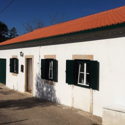 Renovated 3 bed bungalow with 2 acres of flat land, with vineyard and water for sale close to Alvaiázere at Alvaiazere for 135000