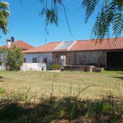 A three bedroom house with three large annexes and a walled, wonderful plot near Tomar for sale. at Tomar for 125000