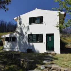 A one bedroom house built over two floors and small storage annex built on a large plot of land for sale near Proença-a-Nova. at Proença a nova for 39500