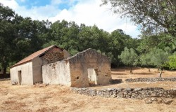 A ruin with permission to expand with no immediate neighbors and mostly flat land for sale near Alvaiazere