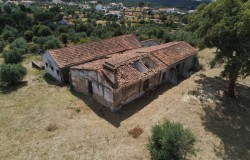 Farm with 4.4 hectares , well and old farmhouse of land for sale near Tomar central Portugal