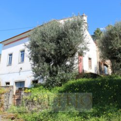 A old and tradicional Portuguese property in need of some love for sale near Ferreira do Zêzere and Tomar at Ferreira do Zêzere for 89000