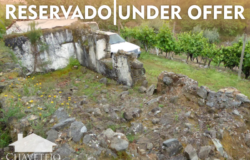 A lovely plot of land with a good number of mature fruit and olive trees and the ruin of a habitational house near Sertã and Cernache do Bonjardim for sale.