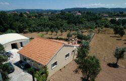 Detached 4 bed bungalow, annex with workshop and lounge area, large fenced land plot with olive trees in Alvaiazere