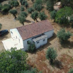 Detached 3 bed country home surrounded by mature olive trees, plus extra plot of land behind the house close to Alvaiazere at Alvaiazere for 90000