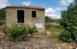Beautiful Vineyard With Ruin - Plans Submitted For a Fabulous Two Bedroom House