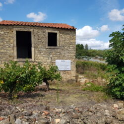 Beautiful Vineyard With Ruin - Plans Submitted For a Fabulous Two Bedroom House at Miranda do Corvo for 70000