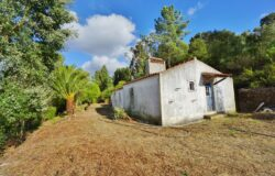 A country escape with great potential and amazing views for sale near Tomar