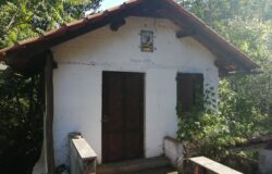 Small hideout in the middle of Nature, for sale, near Figueiró dos Vinhos