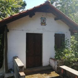 Small hideout in the middle of Nature, for sale, near Figueiró dos Vinhos at Figueiro dos Vinhos for 18500
