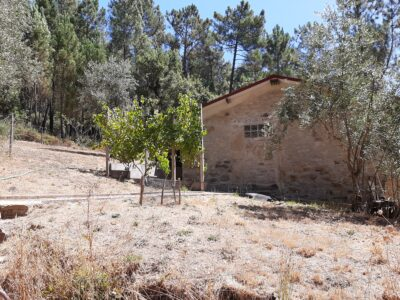 Rudimentary house on large plot of land for sale