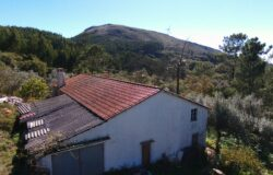 Traditional 2 bed farmhouse, Garage, annexes, approximately 1/2 of an acre of Land, very private with fantastic views of the mountain, near Alvaiázere