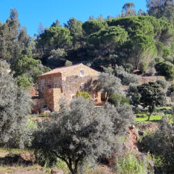 Renovated stone cottage in a stunning location, for sale only 10 minutes from Tomar, Central Portugal at Ferreira do Zêzere for 164000