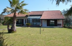 3 BEDROOM DETACHED BUNGALOW FOR SALE IN ALVAIÁZERE, CENTRAL PORTUGAL