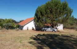 3 bed detached house in need of modernisation for sale near Tomar