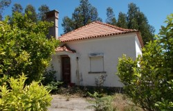 Detached 2 Bedroom Cottage with amazing views near Alvaiazere