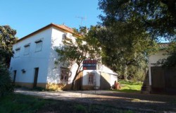 UNDER OFFER //// Detached 3 Bed Traditional Portuguese Farmhouse with Large Annex and Land