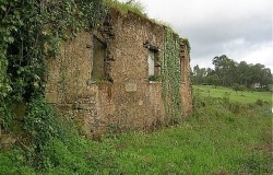 Ruined stone cottage with land for sale in central Portugal