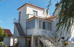 Bargain Traditional Portuguese Family Villa with Various Annexes for sale near Dornes