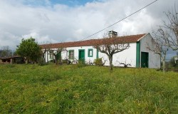 3 Bed Farmhouse to renovate, one hectare of land for sale near Tomar ,Central Portugal