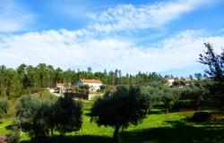 Farm House for sale near Sertã, Portugal