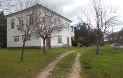 House with two apartments and self contained annex for sale near Tomar, central Portugal