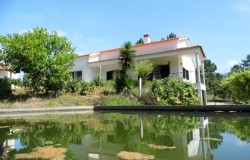 3 Bed house with land and annex for sale near to Tomar in central Portugal