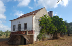 A lovely country property in need of some TLC to bring it back to life for sale near Ferreira do Zêzere, central Portugal