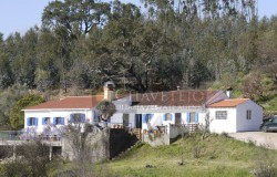 A country property that sits beautifully in its plot for sale just outside of the town of Tomar