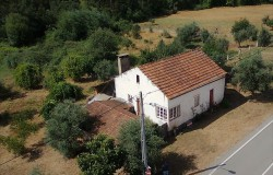 Detached 3 bedroom farmhouse with basement, over 1 acre of land, small river stream at the end of the plot, for sale in Alvaiazere.