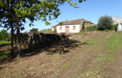 One house to renovate, a ruin to re-build, sat on a large plot of five and half hectares for sale near Pedrógão Grande
