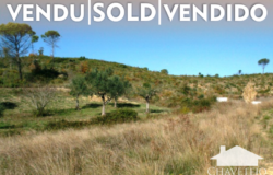 Building plot with 5.2 hectares  of land  with trees and well for irrigation for sale near Tomar Central Portugal