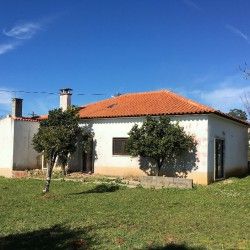 Partially Renovated 3 Bed bungalow in the Camino de Santiago trail, established flat garden with small vineyard close to Alvaiázere at Alvaiazere for 82500