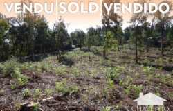 Plot of land apt for planning permission for a family home with a footprint of up to 200 square meters for sale near Sertã