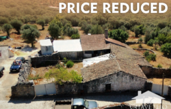 Idyllic countryside location, land, ruins and house 3 independent plots near Alvaiazere