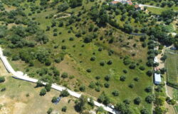 Building plot with  13800 sqm of land to build your dream home, near Tomar Central Portugal