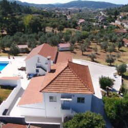 Successful 4/5 bed home, 1 bed guesthouse, swimming pool, well, vineyard & olive grove, Alvaiázere at Alvaiazere for 295000