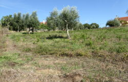 Urban plot for construction well located in the parish of Cabeçudo, Sertã for sale