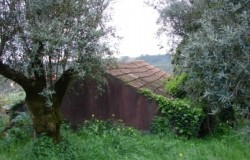 Detached cottage in need of restoration work for sale in central Portugal
